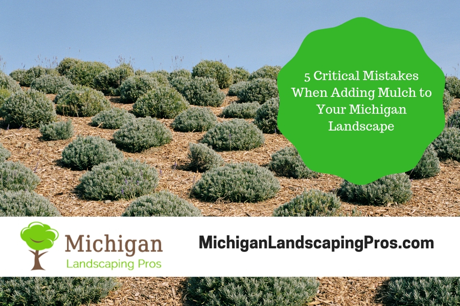 5 critical mistakes when adding mulch to your michigan landscape michigan landscaping pros